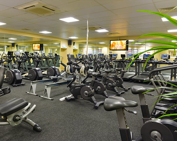 Palms Health & Fitness Club